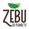Zebu do Planalto