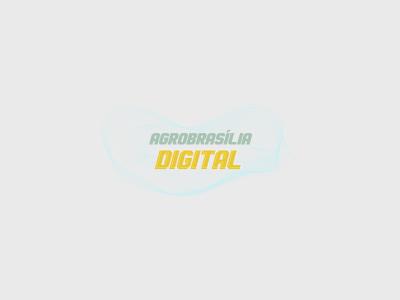 Live sobre orgânicos finaliza agenda de eventos da AgroBrasília Digital